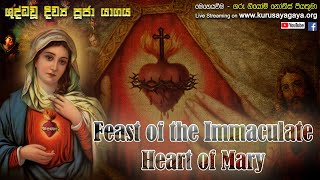 Feast of the Immaculate Heart of Mary - 12/06/2021