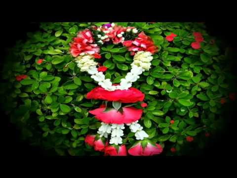 Floral garland – พวงมาลัยดอกไม้