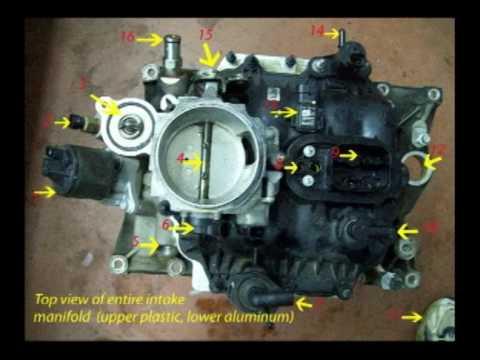 GM 4.3 intake gaskets