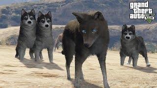 Download Lagu GTA 5 WOLF PACK MOD! - ALPHA WOLF HUNTING (GTA 5 Mods) Gratis STAFABAND