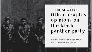 Other people's opinions on the black panther party!