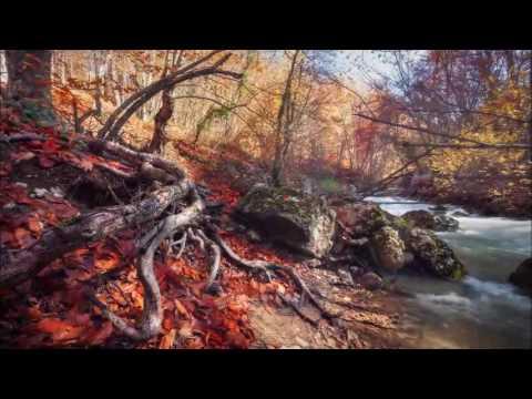 Secret Garden - Aquarell (для скрипки)