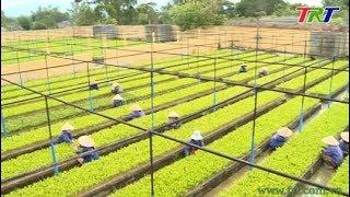 Ứng dụng khoa học công nghệ để phát triển nông nghiệp công nghệ cao