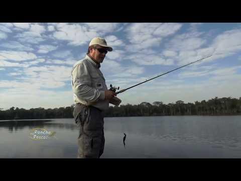 Pescaria de Trairão na lagoa do Cavalo, Mato Grosso - bloco 2