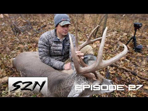 HUNTING PUBLIC, BIG BUCK DOWN! | HUNTING NEXT TO THE ROAD! | CRAZY GRUNTING!