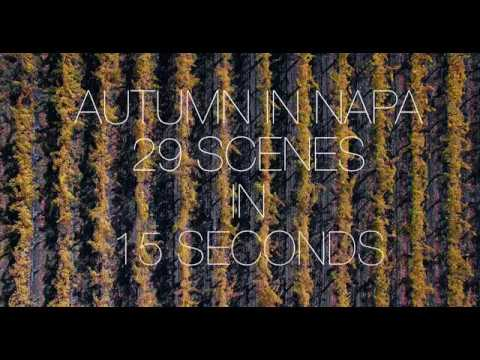 Autumn in Napa: 29 Scenes in 15 Seconds