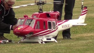 Amazing Details Wild-Cat RC Helicopter Flight and Rescue performance