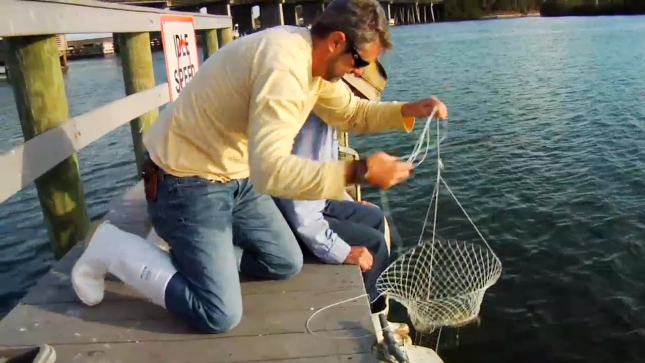 How to catch blue crabs youtube for Fish catching net