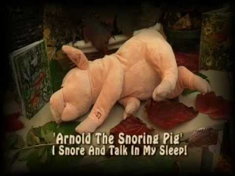 Arnold the Pig - Switch Adapted Talking Plush Toy