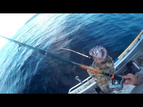 рыбалка на белом море в мае