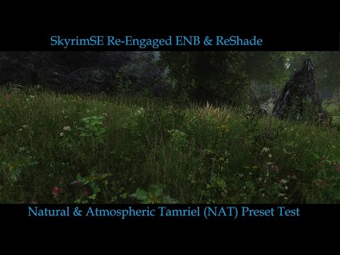 SkyrimSE Re-Engaged ENB+ReShade NAT Preset(BETA)Released. Thoughts?