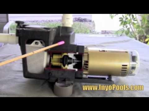 How A Pool Pump Works Youtube