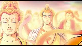 Phật Thuyết A Di Đà Kinh   YouTube