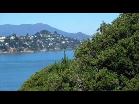 Angel Island State Park Bay and Building Views