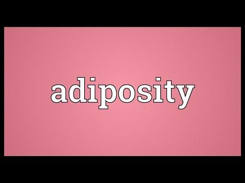 Header of adiposity