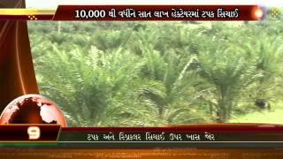 (Gujarati)Gujarat Fast Track Krushi Mahotsav