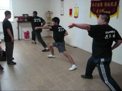 Choy Lee Fut  Training Image 1