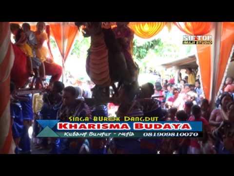 TAKON WALI - Burok Singa Dangdut | KHARISMA BUDAYA | Sukareja 23 Maret 2017