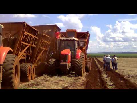 Plantio mecanizado de cana:usina sao Francisco (Marcelao) Go-inaciolandia