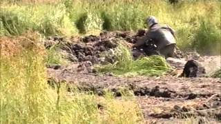 Black River ATV / Quad Mud Bog July 29, 2012 - Part 1