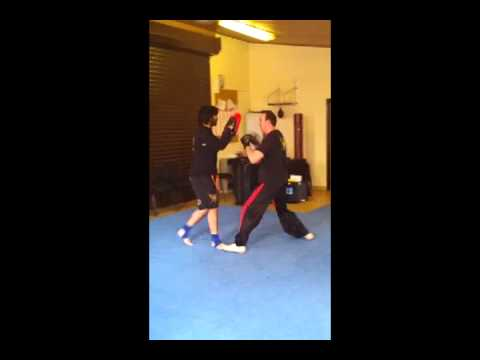 Total Martial Arts -Jun Fan Gung Fu techniques Image 1