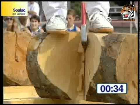 أسرع قاطع خشب في العالم