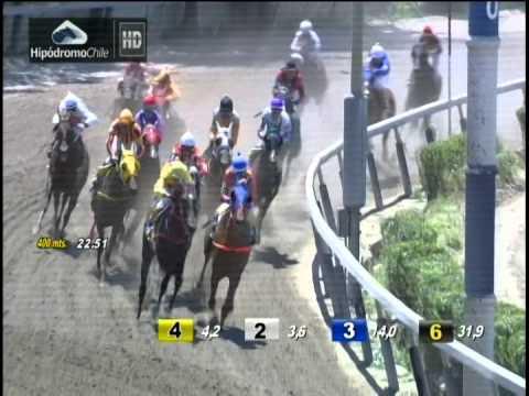 Vidéo de la course PMU PREMIO GRUPIENTO H.