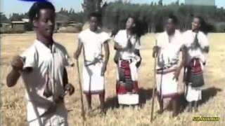 Sirba Oromoo - Wollo [ Oromo Music ]