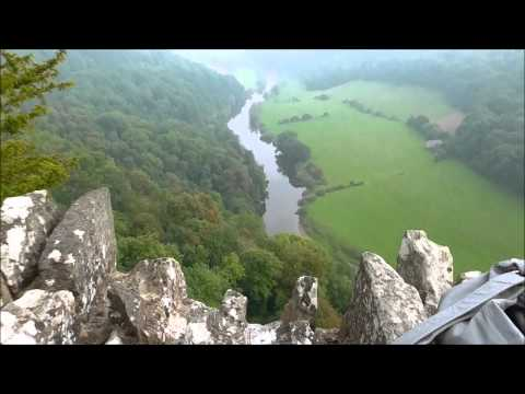 wiltshire-man-visits-fang-horn-forest.html