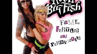 Watch Reel Big Fish Authority Song video