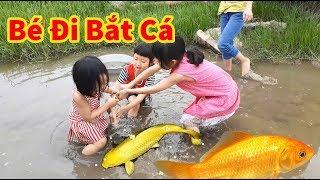 Bé Đi Bắt Cá - Gato Theo Các Chị Ra Đồng Bắt Cua Cá - Gold Sea