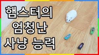 햄스터의 실제 사냥 실력 | 야생 본능 로봇벌레 잡기 | 햄찌 장난감 | 심심타임 심심