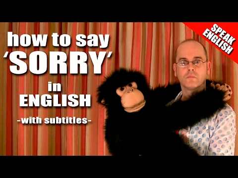 Learning English Lesson Ten ( Saying Sorry )