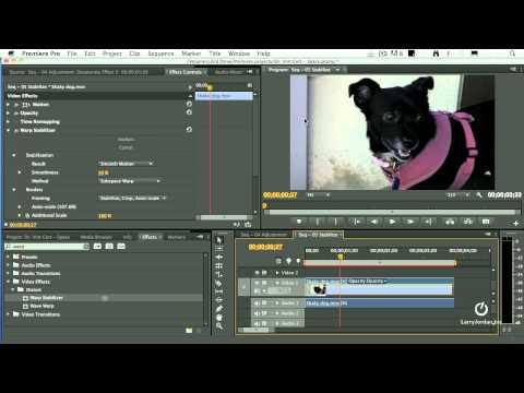 Warp Stabilizer (Eliminate Camera Jiggle!) in Adobe Premiere Pro CS6 (and a cute puppy!)
