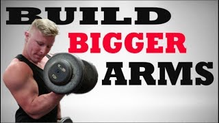 Workout Tips: How To Get Big Arms   Top Arm Exercises