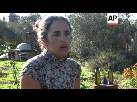 NGO encourages collaboration between Israeli and Palestinian olive oil producers