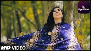 Nadim Hassan - Marr De Sham OFFICIAL VIDEO HD