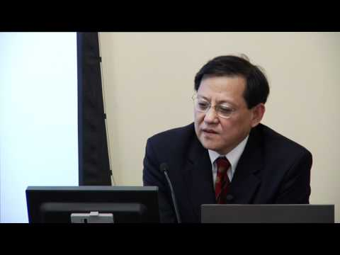 China's Rise and East Asia's Regional Systems - James T.H. Tang