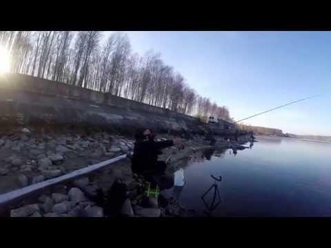 десногорск фидер видео