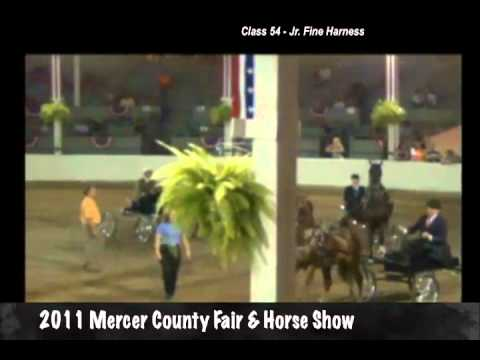 Until Next TIme - 2011 Mercer County Fair Junior  Fine Harness Champion