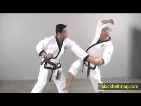 Korean Martial Arts: C.S. Kim and Y.D. Kim Demonstrate a Tang Soo Do Elbow Break!