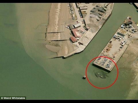Гигантский краб появился у берегов Великобритании