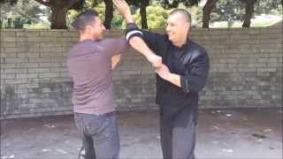 Wing Chun seminar elbow drills - Los Angeles 2015 SiFu Arsenije Jelovac