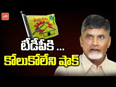 IYR Krishna Rao Joins BJP Party | AP CM Chandrababu | Amit Shah | AP Politics | YOYO TV Channel