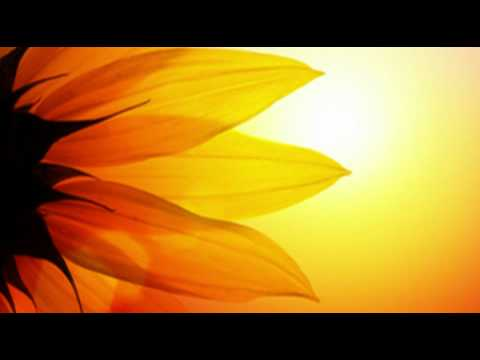 The Most Relaxing [alpha Brainwave Music] On The Net. video