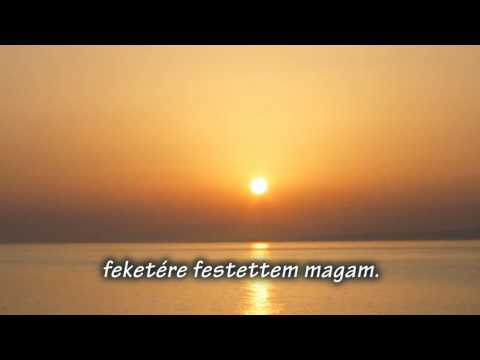 Glen Hansard  -  Falling Slowly magyar felirat