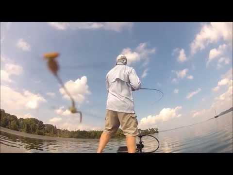BFL Regional-Lake Guntersville