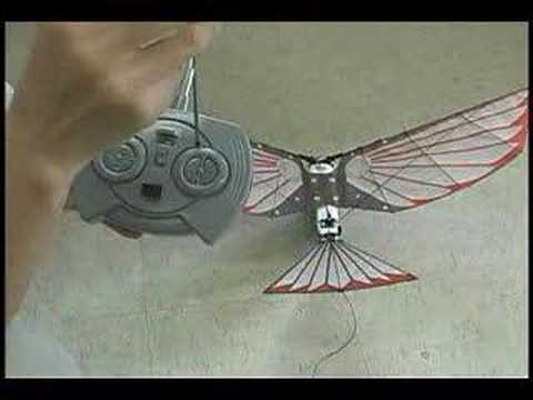 RC Bird Control