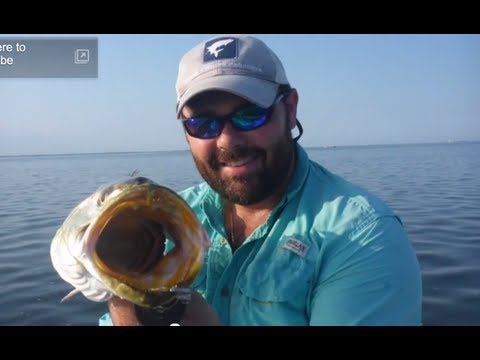 Redfish and Speckled Trout Fishing with popping cork and Artificial Lures Texas lower Coast