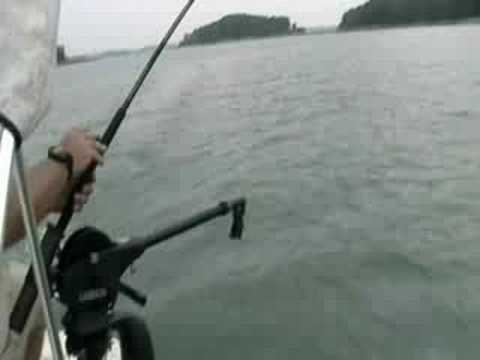 Summer Striper Fishing Part 1 - Downriggers